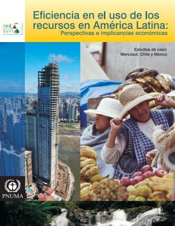 Informe completo - Programa de Naciones Unidas para el Medio ...