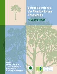 Establecimiento de Plantaciones Forestales: Eucalyptus sp. - Infor