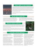 Biodiversité: Perspectives mondiales - GreenFacts - Page 2