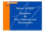Option 3A PCB : Processes for Fine Chemistry and ... - ensiacet