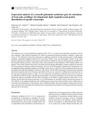 Expression analysis of a cytosolic glutamine synthetase gene in ...