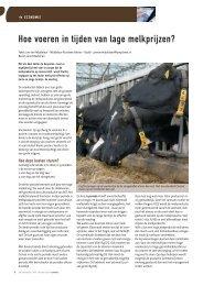 Hoe voeren in tijden van lage melkprijzen? - Melkveebedrijf