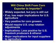 Future of China's Corn Trade, Dec. 1 ICN Conference