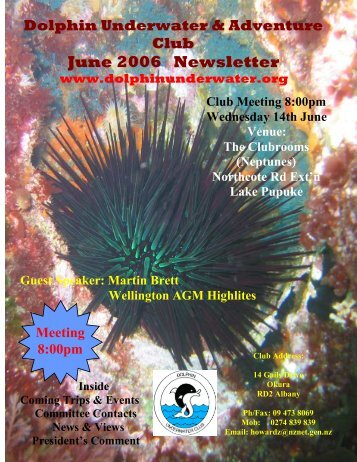 June 2006 Newsletter - DolphinUnderwater.org