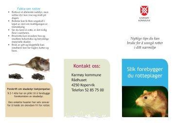 Rotter - Karmøy kommune
