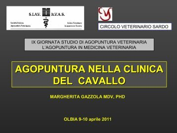 File in formato pdf - SIAV
