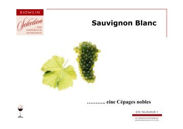 Sauvignon Blanc - BIOWEIN Selection