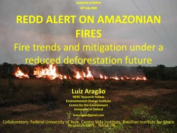 Fire trends and mitigation under a reduced deforestation future