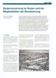 Bodenversalzung im Sudan und die Möglichkeiten der Bewässerung