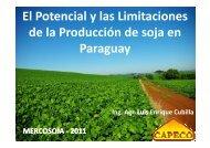 El Potencial y las Limitaciones de la Producción ... - Mercosoja 2011