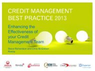 Enhancing the Effectiveness of your Credit Management ... - Experian