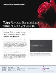 Tetro Reverse Transcriptase Tetro cDNA Synthesis Kit