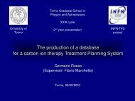 The production of a database for a carbon ion therapy Treatment ...