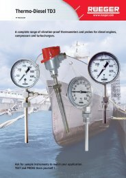 FT Thermo-Diesel.pdf - Rueger