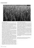 Migräne und Burnout Syndrom - Shiatsu-Netz - Page 4