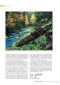 Generell hänsyn och naturvärdesindikatorer - SLU - Page 3