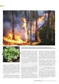 Generell hänsyn och naturvärdesindikatorer - SLU - Page 7