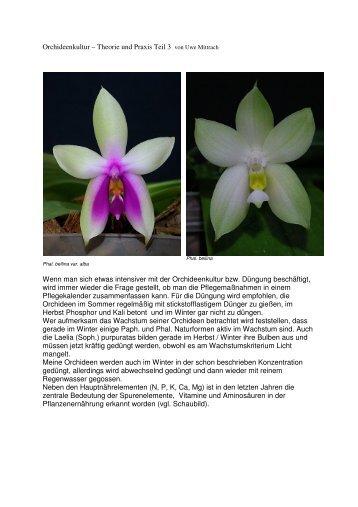 Orchideenkultur – Theorie und Praxis Teil 3 von Uwe ... - Ofnds.de