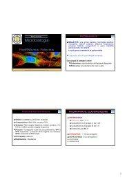 Sezione di Microbiologia