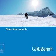 blueSummit Unternehmensbroschüre