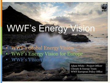 WWF's Energy Vision