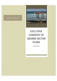 executive summary of george sector plans - George Municipality