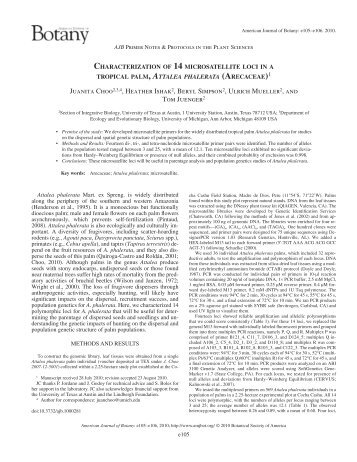 characterization of 14 microsatellite loci in a - American Journal of ...