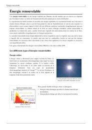 Énergie renouvelable - Patrick MONASSIER - Free