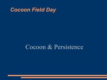 Cocoon & Persistence