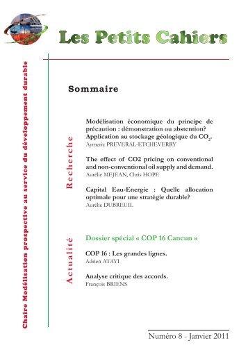 "Janvier 2011 - Chaire ""Modélisation prospective"