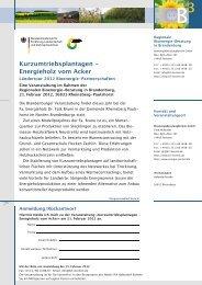 Energieholz vom Acker - BioenergieBeratungBornim GmbH