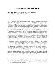 MICROEMPRESA Y AMBIENTE