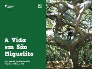 tortillas - Rainforest Alliance