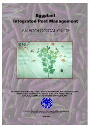 Eggplant Integrated Pest Management AN ECOLOGICAL GUIDE