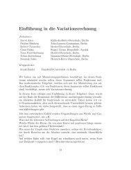 Einführung in die Variationsrechnung - Mathematik und ihre Didaktik