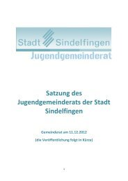Satzung des Jugendgemeinderats der Stadt Sindelfingen