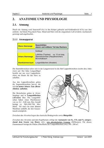 2. ANATOMIE UND PHYSIOLOGIE