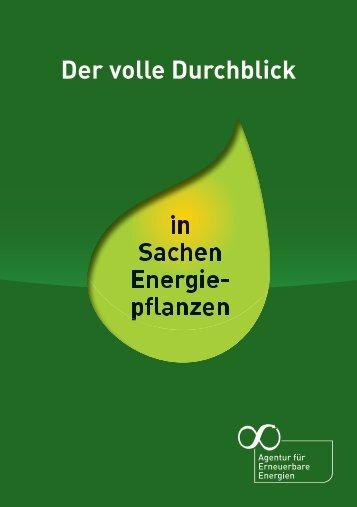Der volle Durchblick in Sachen Energiepflanzen - Agentur für ...