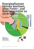 Der volle Durchblick in Sachen Energiepflanzen - Agentur für ... - Seite 7
