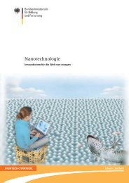 Nanotechnologie in der Natur