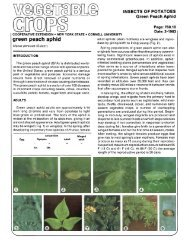 296k pdf file - New York State Integrated Pest Management Program ...