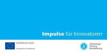 Impulse für Innovatoren - Synexa-consult