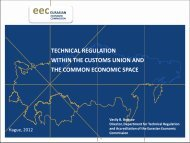 Technical regulation within the Customs Union and the Common ...