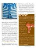 erlaubt den Durchblick - Seite 5