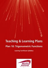 Teaching & Learning Plan 10 - Project Maths