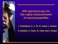NIR spectroscopy for the rapid measurement of wood properties