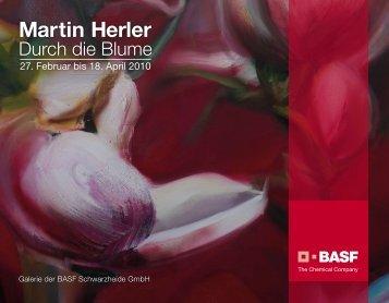 Martin Herler - kunst-raum / schulte-goltz + noelte
