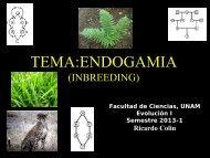 TEMA:ENDOGAMIA - UNAM