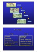 Popolazione - ZyXEL NSA210 - Page 2