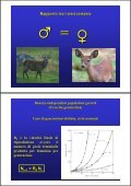 Popolazione - ZyXEL NSA210 - Page 7